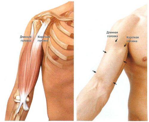 csípő keresztcsonti izületi gyulladás lehetséges-e szárnyalni kezüket az ízületi gyulladásról