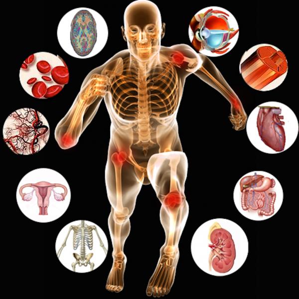 neve hip csípőbetegség legjobb gyógymódok az ízületi fájdalmakhoz