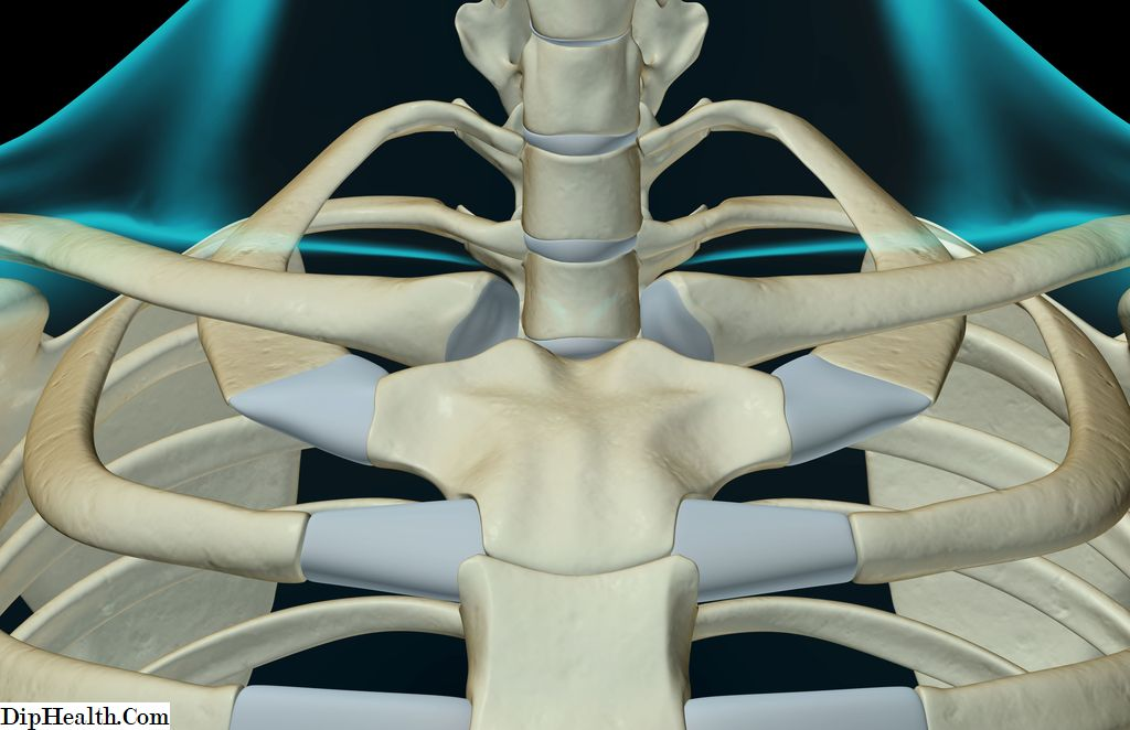 Sternoclavicularis ízület arthrosisa