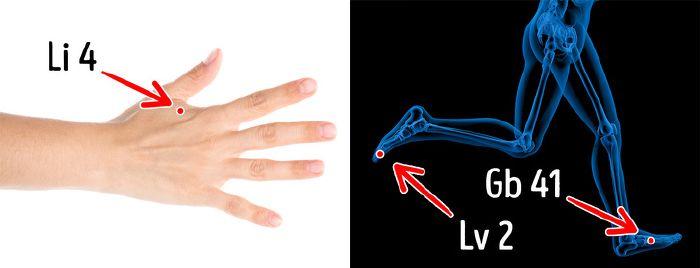 gyógynövények az artrózis kezelésében ízületi rugalmassági előkészületek