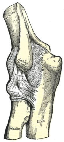 ízületi fájdalom és deformáció dimexid a lábujjak artritiszében