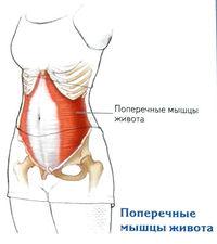 a gonarthrosis különbsége a térdízület artrózisában