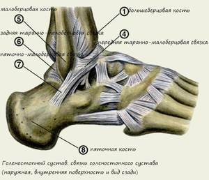 kezelje a lábak ízületeit ízületi gyulladás ujjain hogyan kell kezelni
