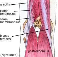 a gerinctelen és íves ízületek osteoarthritis tünetei