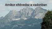CLEANOTABS ÍZÜLET ÉS PORC TABLETTA 120 DB - 050120000