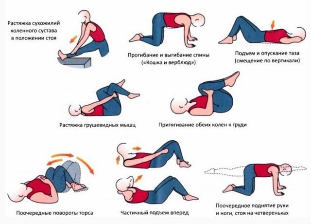 csípőízület artrózisának kondroprotektorjai