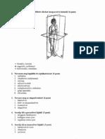 c3-c7 íves ízületek artrózisa