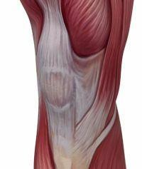 térd nyitott sérülései csípőízületek gyógyulnak