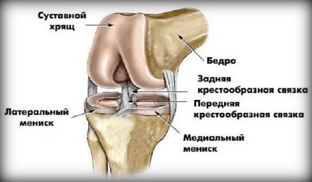 ízületi fájdalom mint probléma artrózis és ízületi gyulladás kezelés
