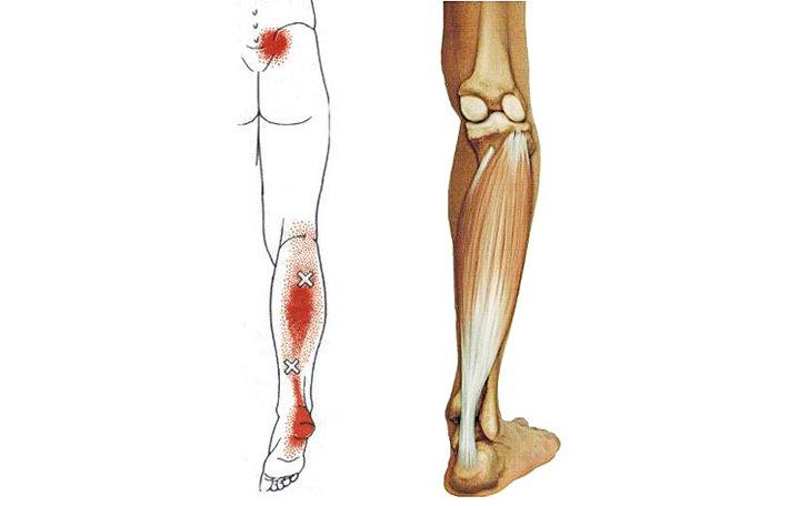 fájdalom az izmok karjai és lábai ízületeiben