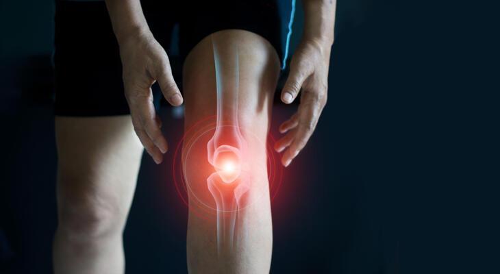 fájdalom az összes ízületben latinul a térdízület kezelésének ízületi zsírja