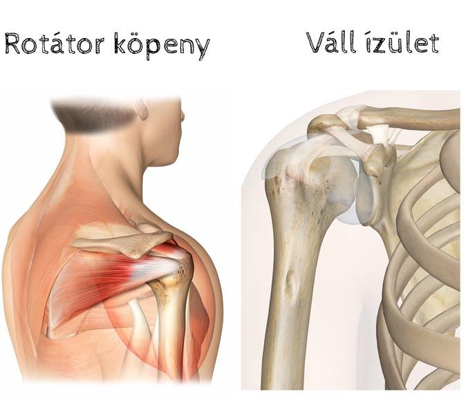 miért fáj a karok ízületei, ha a váll boka folyadék kezelése