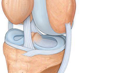 áttekintést nyújt a térd artrózisának kezelésére