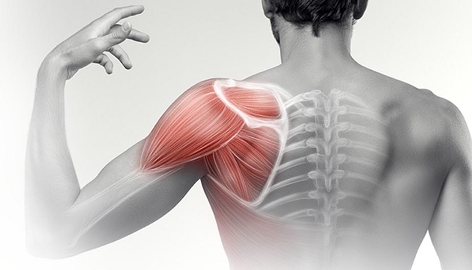 vállfájdalom fájdalom edzés után