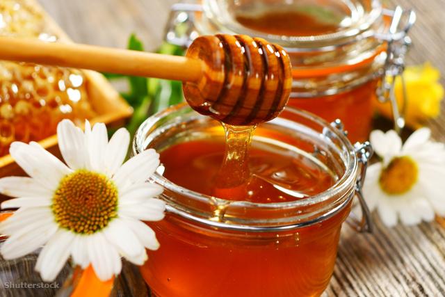 Méhesház Hajdúszoboszló | méhterápia