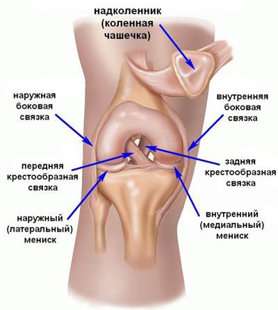 Gyakori megbetegedések - A térdízület lábának duzzanatában