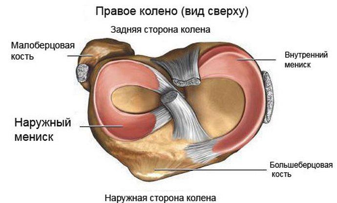 A bal térdízület artrózisa 2 fokos kezelés, Vizsgálati módszerek