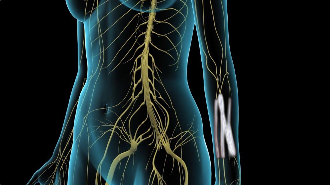 arthrosis kezelés stroginóban clavicularis acromialis ízületi kezelés