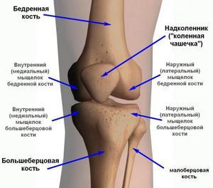 gyógyítja a térdrándulást izomfájdalom és csípőízület