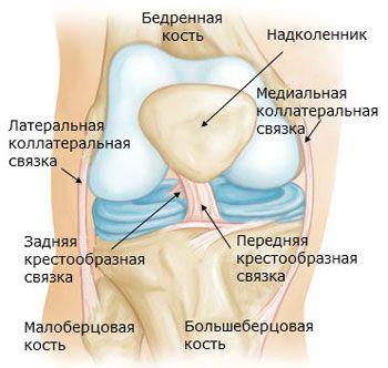 térdízület gyulladás szinoviális membránja