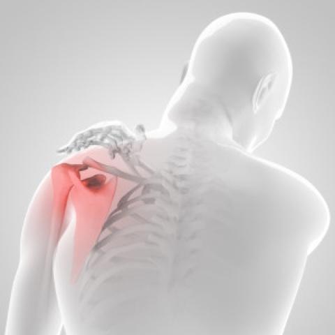 testépítés vállízület fájdalom