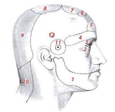 farida bikbaeva ízületi kezelés
