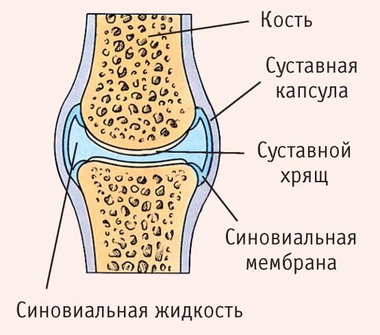 térdízület kezelése chlamydialis arthritis hogyan kell kezelni a vörös ízületet