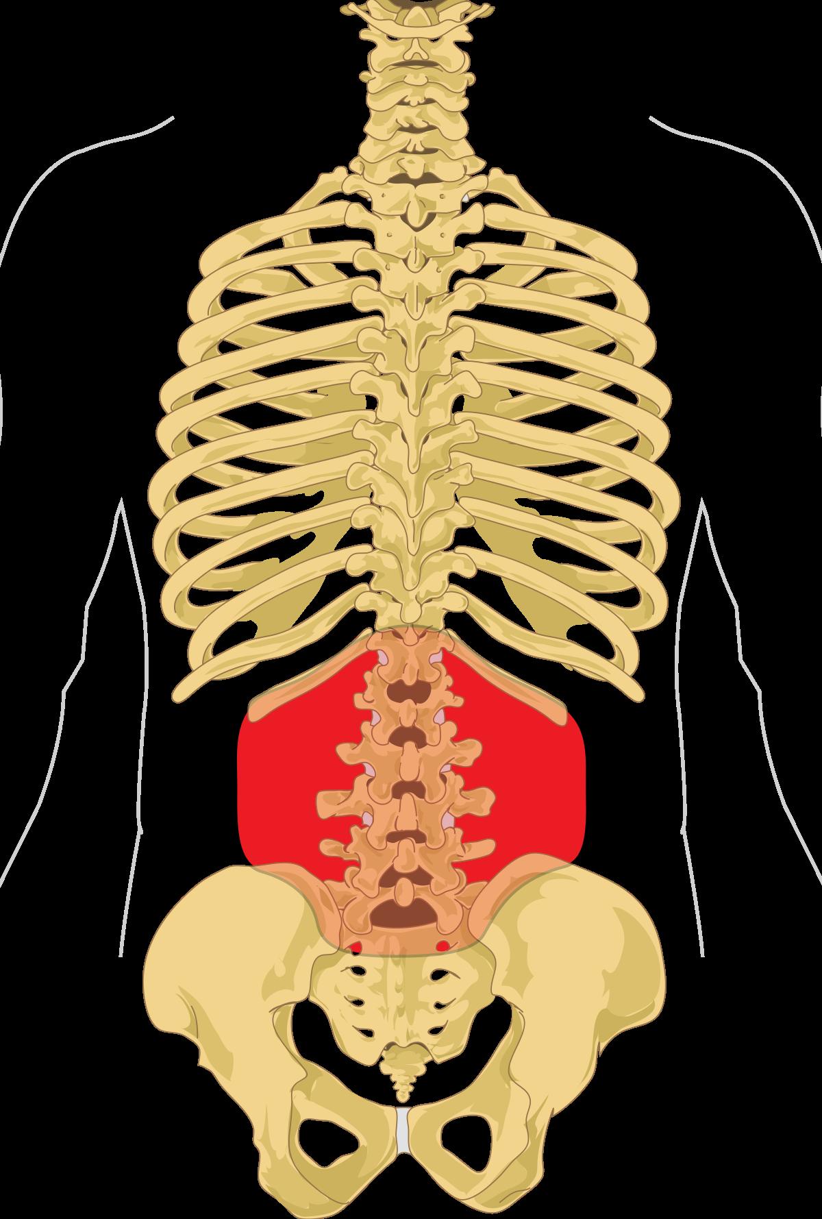 a gerinc ízületeinek krónikus gyulladása
