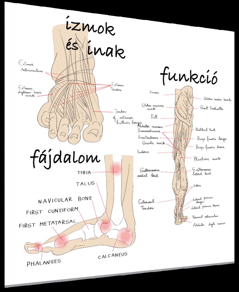 a láb kezelésének rheumatoid arthrosisja csuklógyulladás tünetei