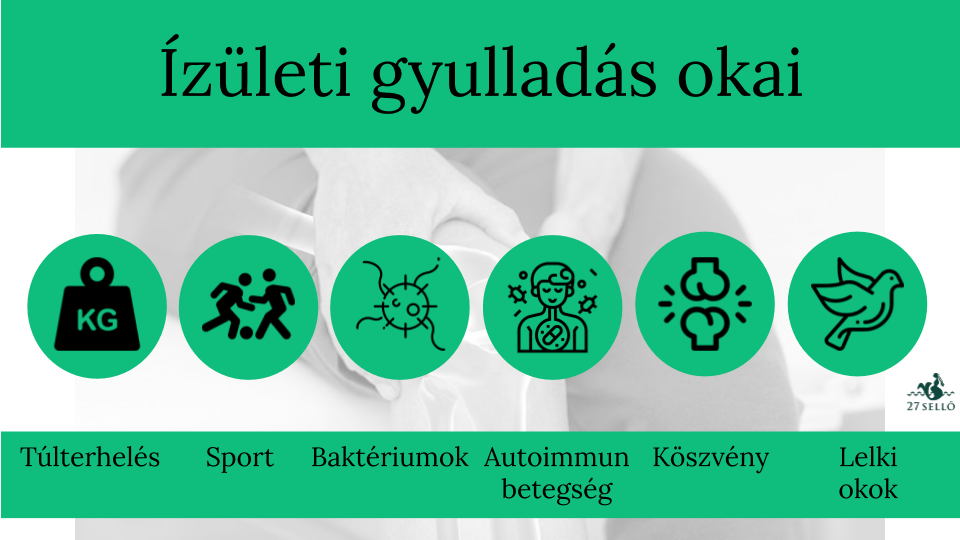 Degeneratív ízületi betegségek | panevino.hu – Egészségoldal | panevino.hu