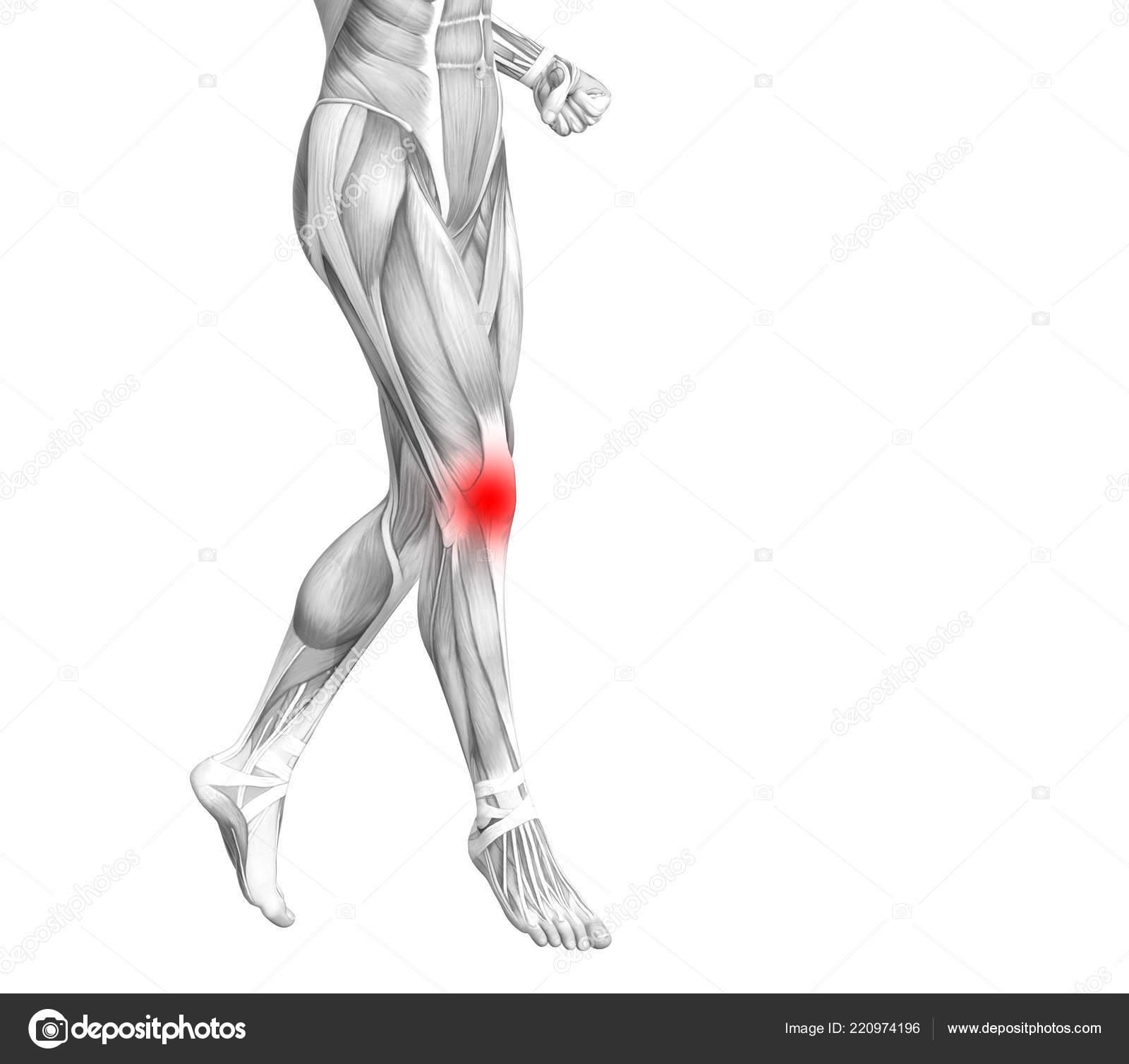csontbetegség térd osteoporosis fájdalom és zsibbadás a csípőízületben