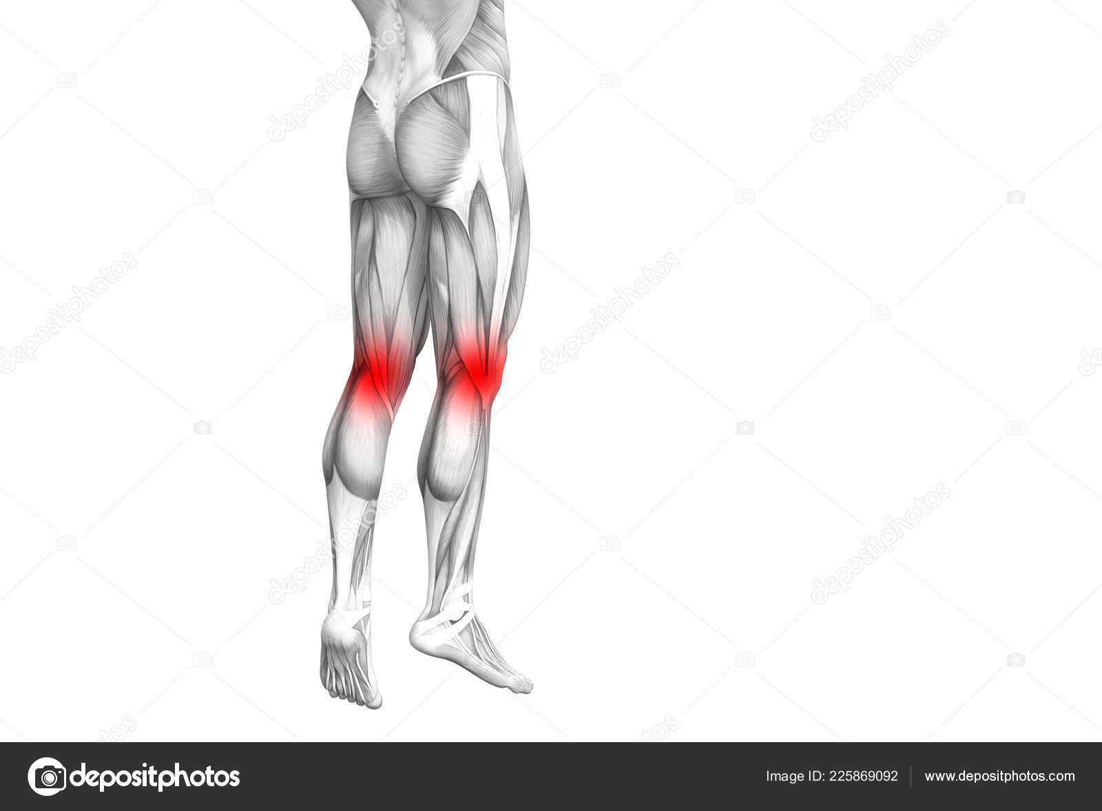 csontbetegség térd osteoporosis