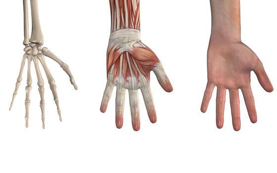 Alagútszindróma 7 oka, 3 tünete, 6 kezelési módja [teljes útmutató]