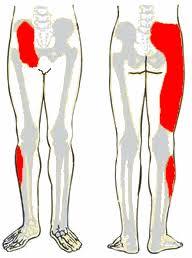 A gerinc túlmozgékonyság
